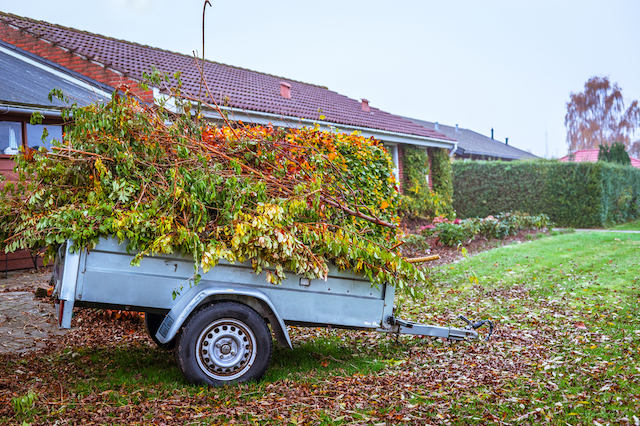 A landscaping trailer full of leaves and branches sits on a lawn in front of a brick house.